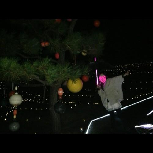 クリスマスツリーもどき